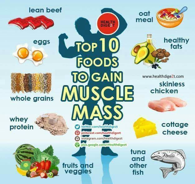 Healthy Foods To Eat To Lose Fat And Gain Muscle